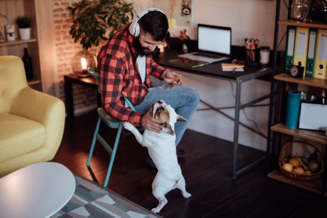 homem trabalhando em home office com seu cachorro